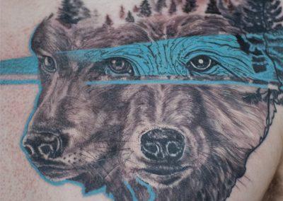 Doublewolf2 - yanick Sasseville
